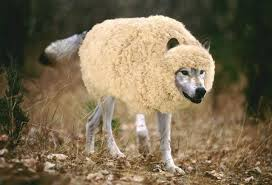 Вук Томић пастир-лажни иде и тражи кога да прождере