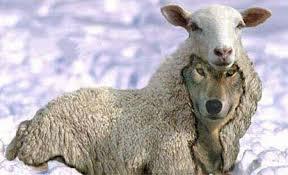 Вук Томић - пастир лажни